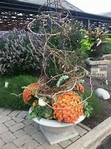 fall container idea garden pinterest