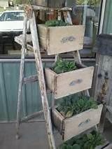 repurposed junk urban garden ladder repurposed junk
