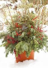 ... Gardens Ideas, Container Gardens, Decor Ideas, Midwest Living, Winter