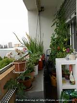 Amazing Apartment Balcony Garden Ideas | Furniture & Home Design Ideas