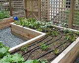raised garden bed ideas how to make one yourself home decorating