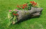 natural log flower planter gardening pinterest