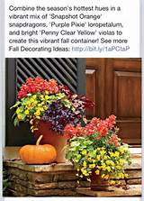 From Southern Living | Container Gardening ideas | Pinterest
