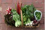 Dump the grocery store, pick up a CSA basket - RENTCafe rental blog