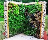 backyard garden design garden wall ideas are an excellent method to ...