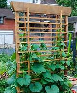 Pallet vertical garden idea | Vegetable Gardening | Pinterest