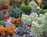 Cactus Garden Design cottage gardening 2 Cactus Garden Design More