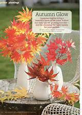 Fall Better Homes And Gardens Home Decorating | Home Decorating Ideas