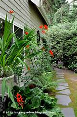 pin by sheryl mackey on gardening pinterest