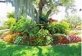 Les jardins aux plates-bandes fleuries