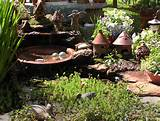 little pond fairy gardens pinterest