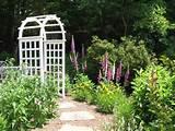Cottage garden entry | Landscape Ideas | Pinterest