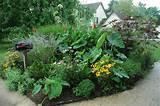 garden double take one mailbox garden two seasonal looks photo