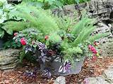 container-gardening-ideas-container-gardening-gardening-repurposing ...