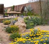 arizona desert landscape design ideas landscaping ideas landscape
