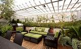 roof garden at urban family home