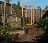 vegetable trellis garden ideas pinterest