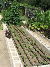 Effective drip irrigation made simple