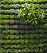 applicative vertical garden designs one of 5 total snapshots