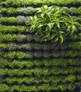 Applicative Vertical Garden Designs One of 5 total Snapshots ...