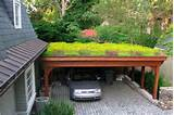 rooftop gardens the green roof not just a trend