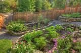 Garduri ieftine si bune. 5 idei - Casa și Grădina
