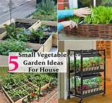 Interesting, Easy And Small Vegetable Garden Ideas For Your House ...