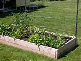 OSU Master Gardener(TM)