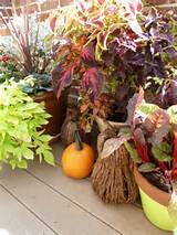Outdoor Fall Planter Ideas http://www.designimprovised.com/2012/09/how ...