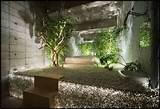 indoor mini zen garden designs for display interior idea lawn garden