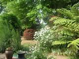 luscious spring garden garden ideas 1 pinterest