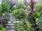 How To Create An Eco-Friendly Home Garden | Tom Corson-Knowles