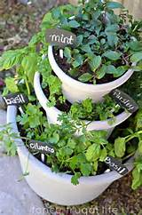 great patio herb garden for the home pinterest