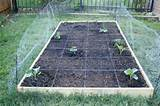 ... Square Foot Garden Grid (& Fall Gardening Update) | This Chick Cooks