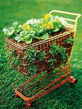 gardening container plans ideas simple salad garden containers page 2
