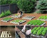 How to DIY Recycled Pallet Garden Planting Tutorial | www.FabArtDIY ...