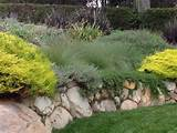 garden design ideas mediterranean landscape retaining wall perennials