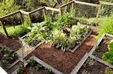 ... Garden, Garden Ideas, Garden Design, Gardens, Traditional Landscape