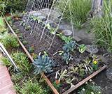 square foot gardening | Ideas for My Garden | Pinterest
