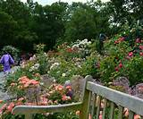 The Garden Life: Peggy Rockefeller Rose Garden at the New York ...