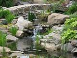 water garden backyard waterfall and bridge by matthew giampietro