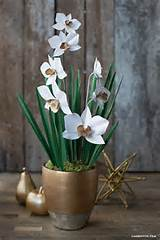 paper cymbidium orchid plant 724x1083 big diy ideas