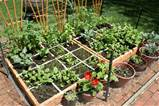 Square-foot-gardening-300x200 in Square Foot Gardening and ...