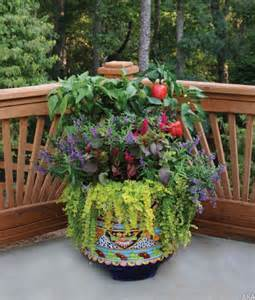 Container Gardening: Reap the Benefits of Growing Anywhere | My Green ...