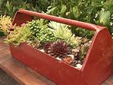 ... to and while you are there …they have 14 MORE garden planter ideas
