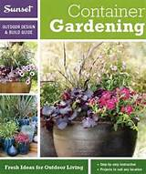 cheap container gardening for you find container gardening for you