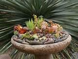 Attraktive Deko Ideen für den Garten – Springbrunnen mit ...