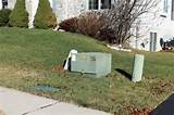 What to plant in front of a utility box: Gardening Q&A with George ...