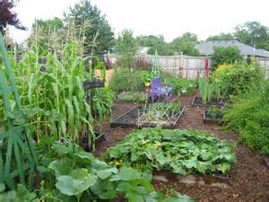 May Dreams Gardens: Pinning up a vegetable garden