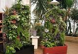 Vertical Garden Ideas Inspiration 20 Vertical vertical garden ideas ...